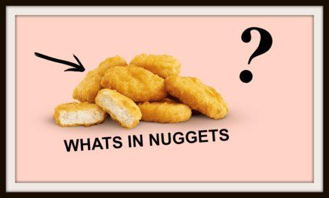 What's Really in Mcnuggets