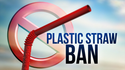 Straw ban, are you a fan?