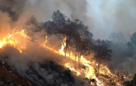 The Camp Fire; the Deadliest Fire in California