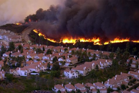 What Can I Do About Wildfires?